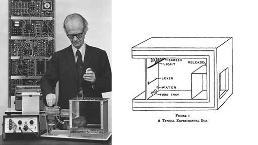 Skinner with his box.